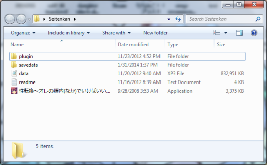 initial install folder seitenkan